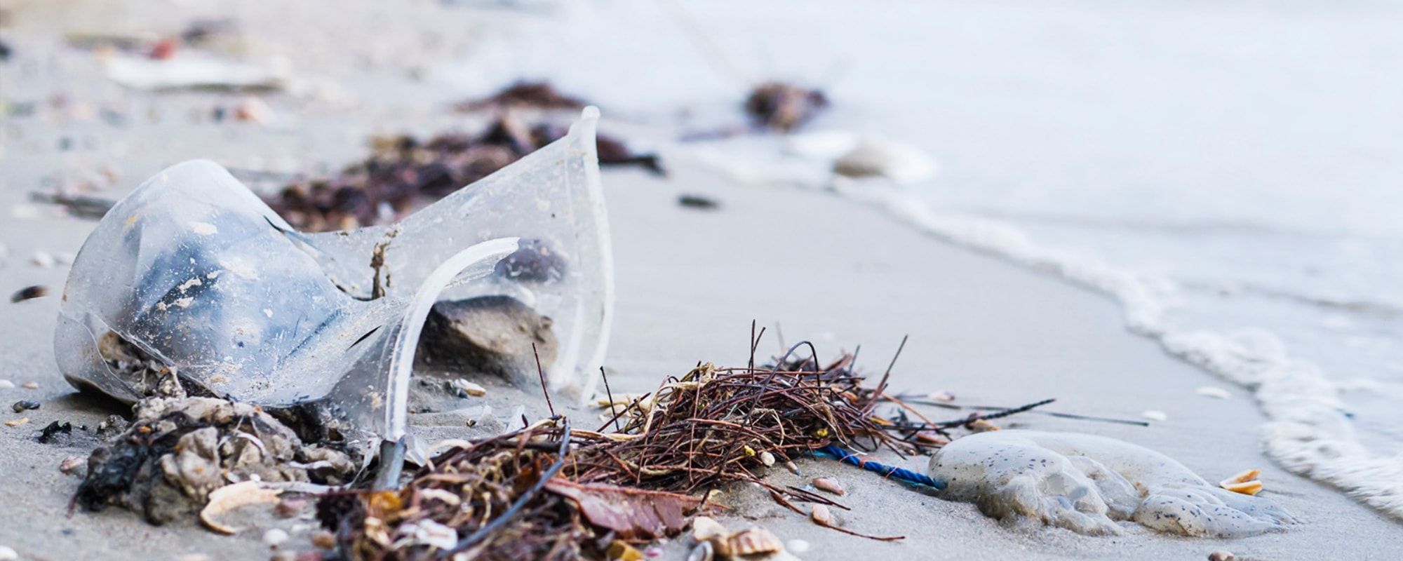 6 Tips To Reduce Ocean Plastic Pollution Right Now