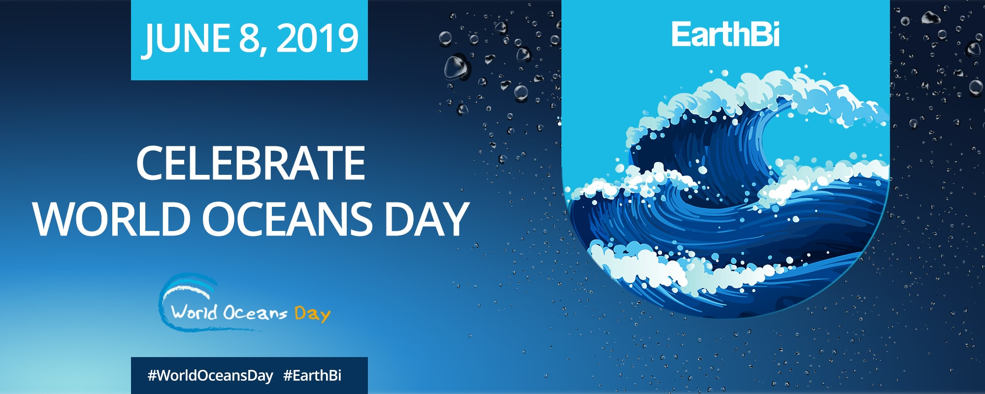 ocean world day 2019