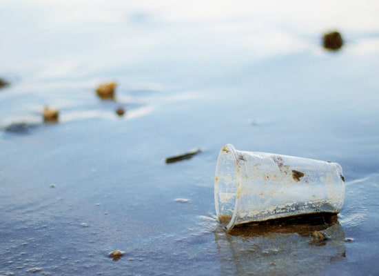 bioplastic biodegradable in the marine environment