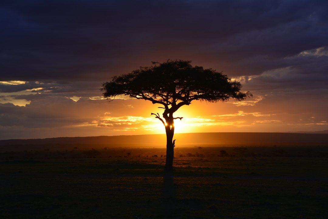Africa, nuova frontiera delle crypto