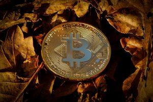 Il bitcoin cerca una base per ripartire