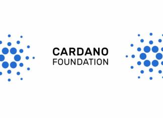 cardanoreport