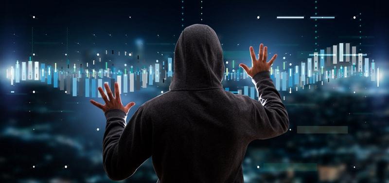 Gli hacker mettono a dura prova i tori