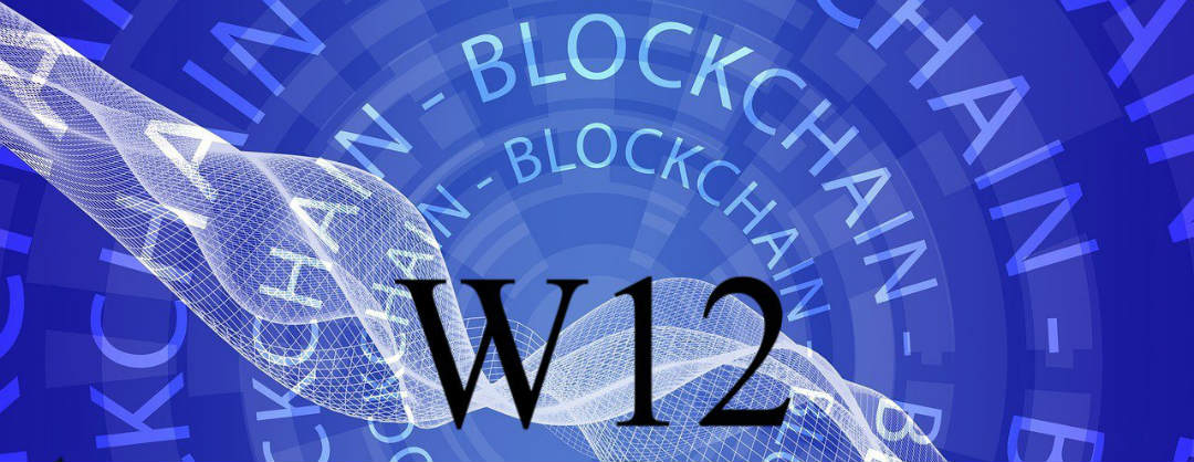 W12, la sicurezza delle ICO