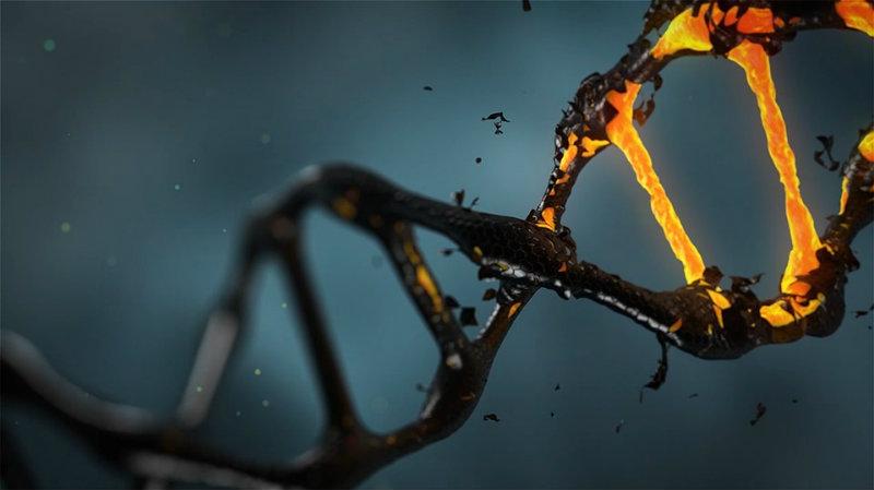 Il DNA diventa il nuovo cold wallet