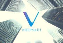 blockchain vechain