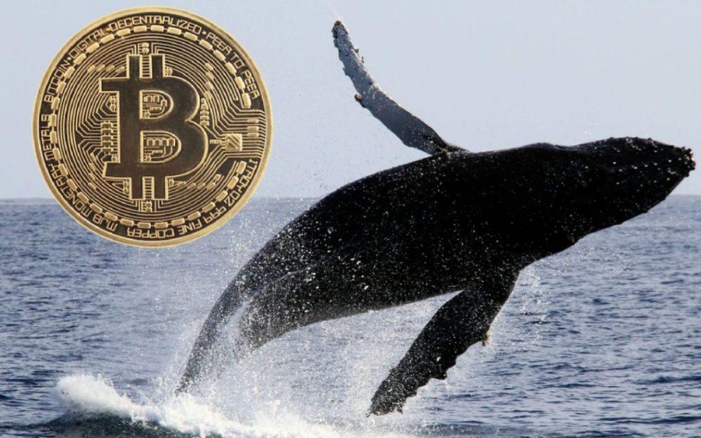 Bitcoin in circolazione