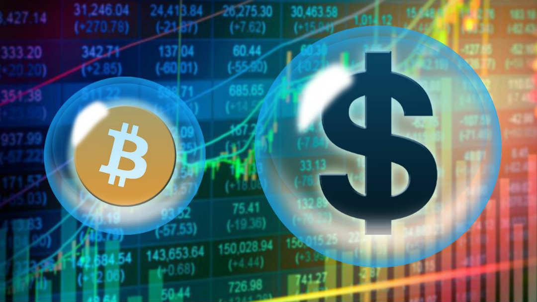 BTC vs USD, pro e contro