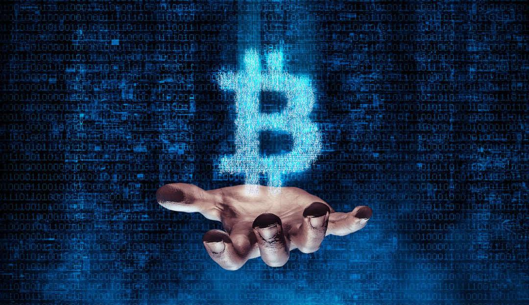 Le balene possiedono più della metà dei Bitcoin in circolazione