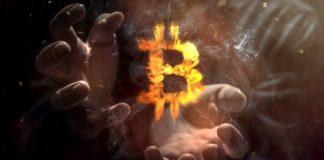 crypto volatility stable coins