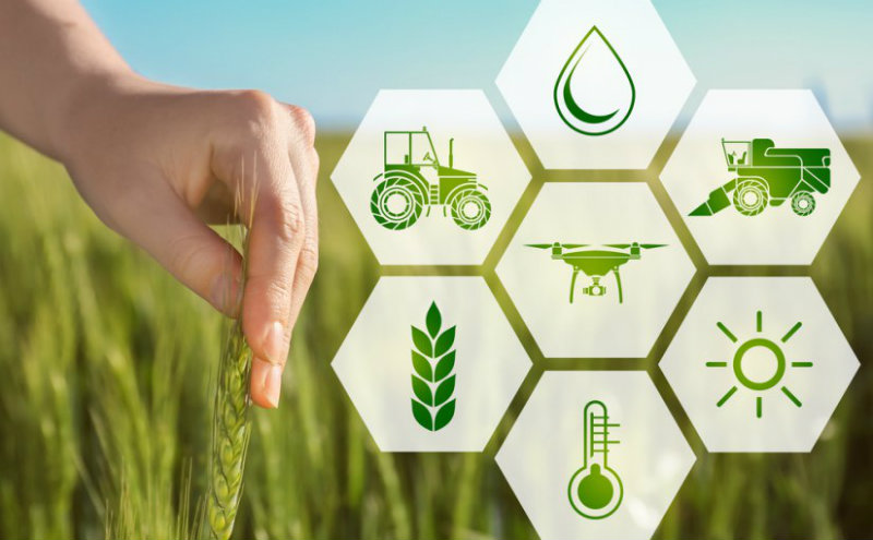 Agri-tech: benefici e casi d'uso della blockchain nel mondo dell'agricoltura