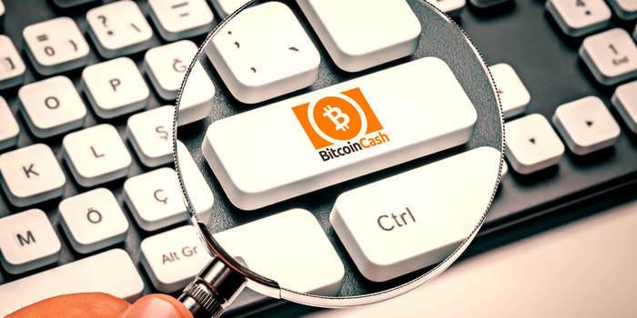 Bitcoin Cash SV vs Bitcoin ABC: il primo in vantaggio per hashpower
