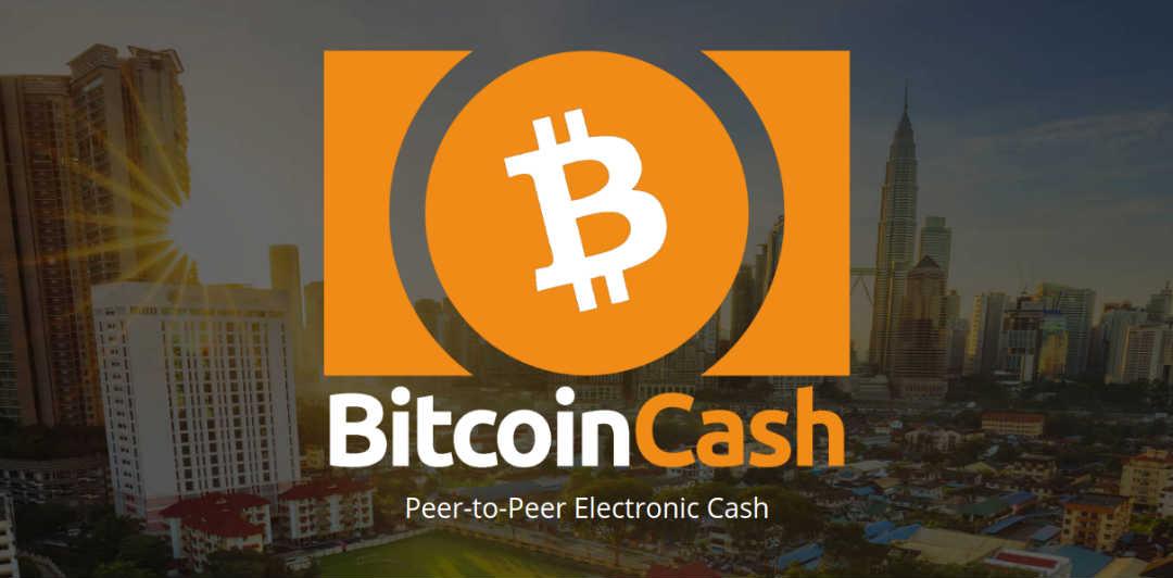 Bitcoin vs Bitcoin Cash nelle parole di Roger Ver