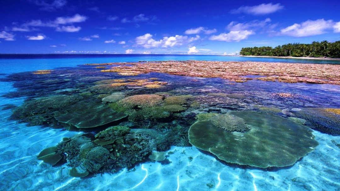 Isole Marshall, la crypto di Stato Sovereign forse non arriverà