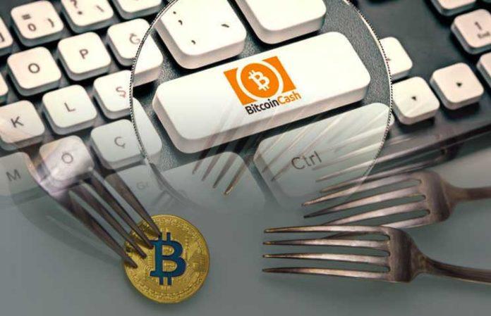 Bitcoin Cash: fork avvenuto con sdoppiamento della catena