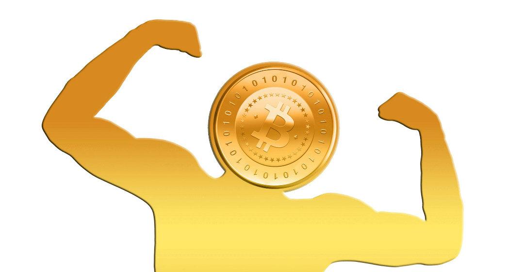 L'adozione di Bitcoin in aumento, parola di Circuit Capital