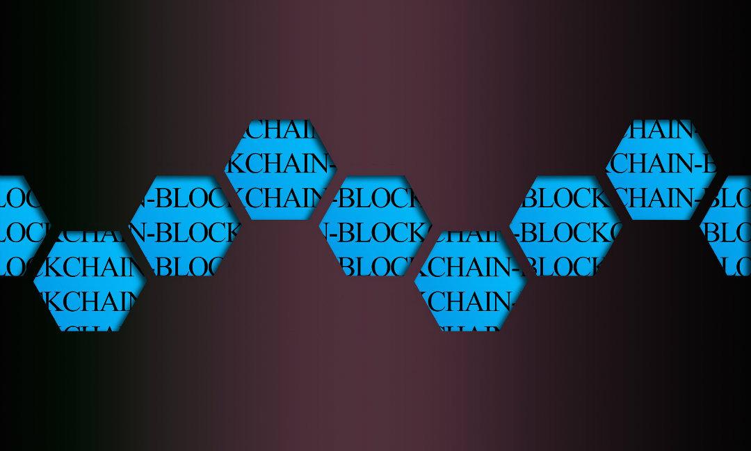Blockchain privata vs blockchain pubblica. Quali sono le differenze?