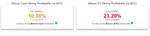 roger ver bitcoin cash network