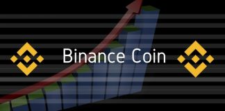binance coin value