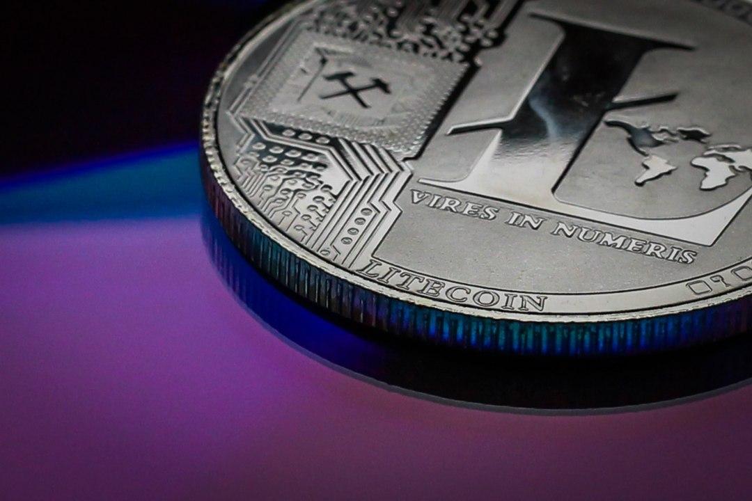Litecoin: la crypto diventa partner ufficiale di UFC