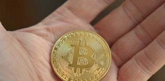 USA freelance pagati in crypto