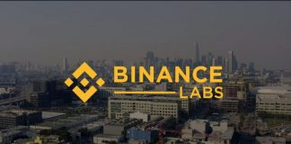 yele bademosi binance lab