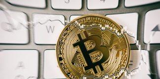 bolla bitcoin vs bolla apple