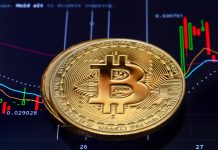 fang crypto market capitalization