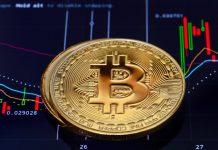 fang capitalizzazione mercato crypto