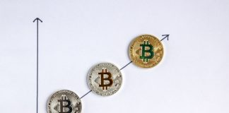 Satis Report prediction price