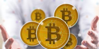 report diar bitcoin holder