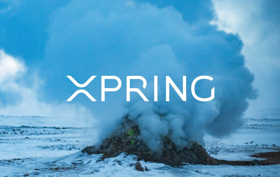Raised in Space: una partnership con Xpring di Ripple per il settore musicale
