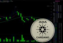 Cardano value today