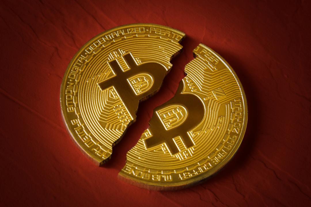 """Nicholas Weaver, Berkeley: """"Bitcoin è escremento di bovino"""""""