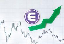 Enjin coin value