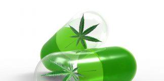 California news cannabis crypto