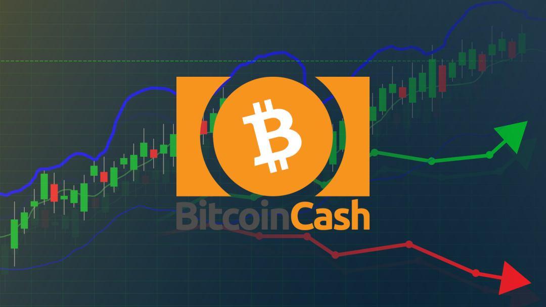 Novità Bitcoin Cash: oggi il prezzo sale del 45%