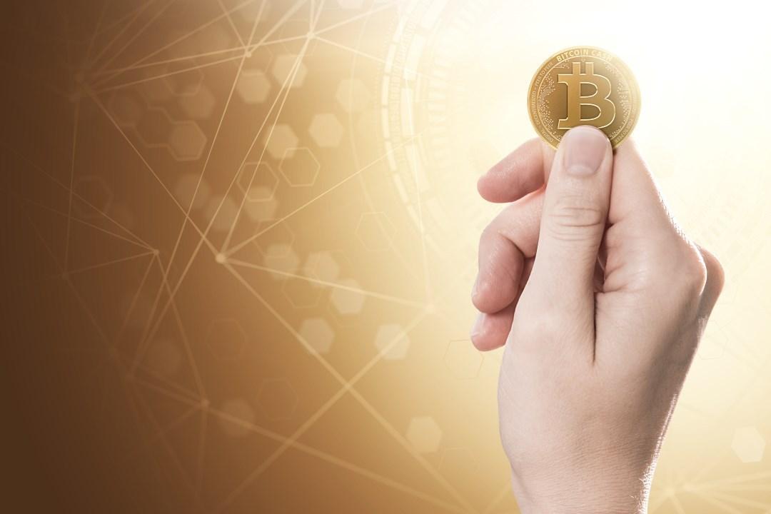 Bitcoin Cash BCH fork