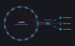 What is the Liquid Network sidechain