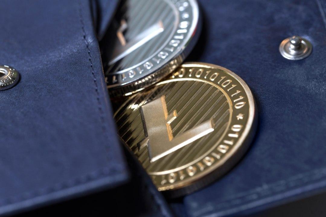 Arriva la carta di debito di Litecoin (LTC)