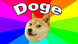 meme doge
