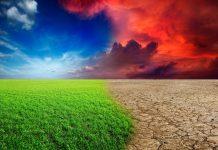 Blockchain cambio climatico