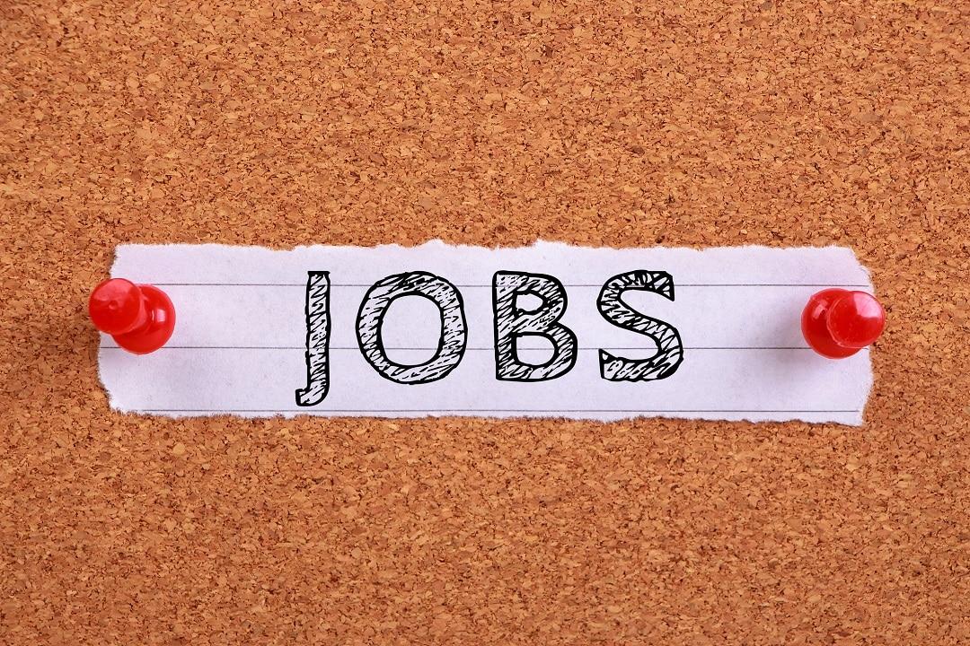 Le skills richieste per un lavoro nel mondo delle criptovalute
