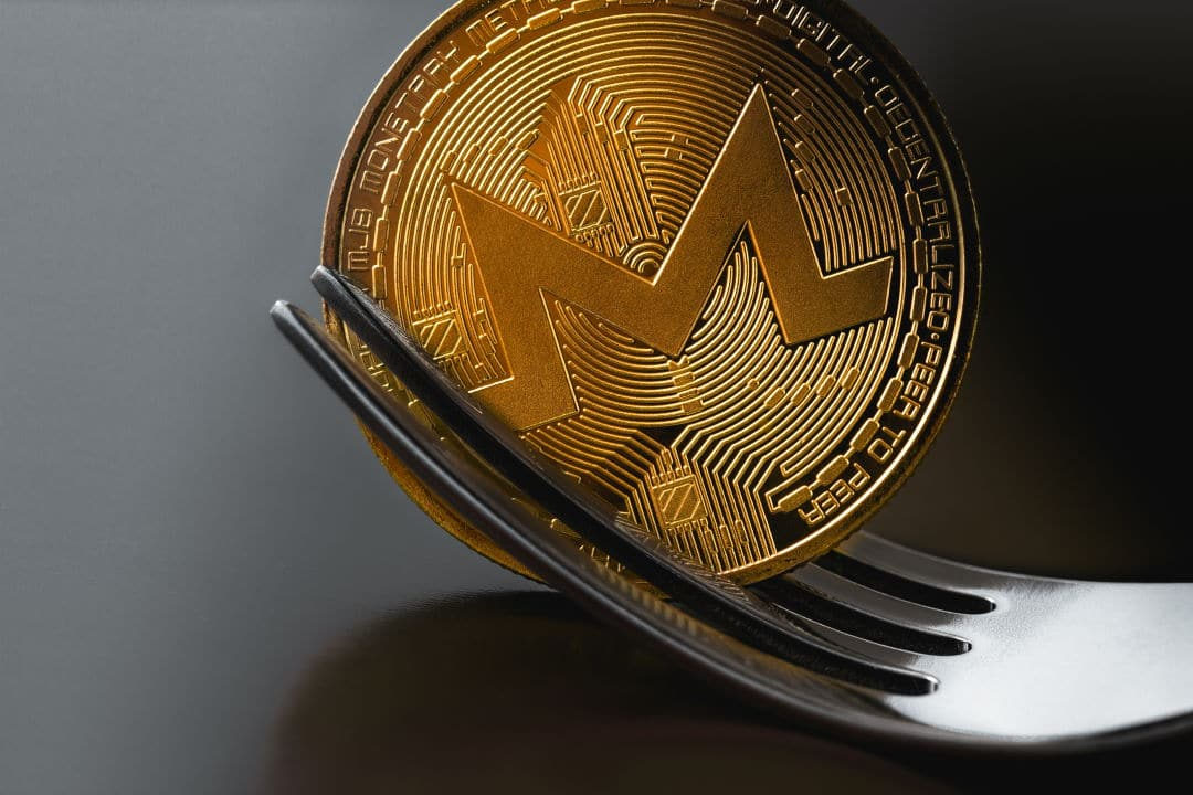 Hard Fork Monero RandomX