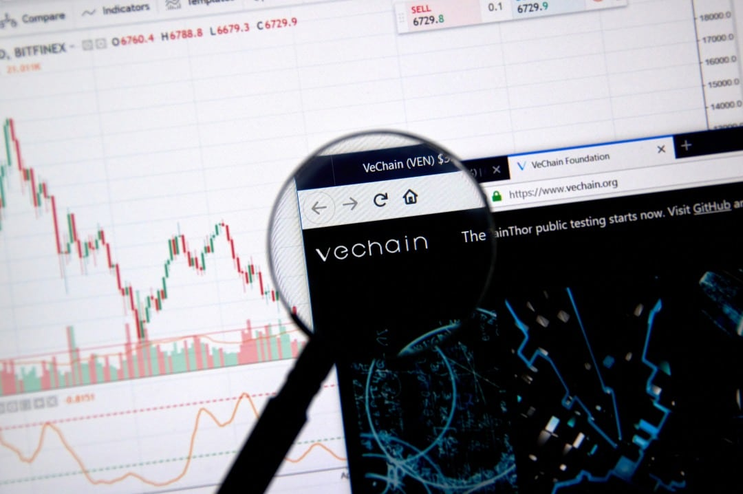 VeChain: sale il prezzo grazie all'hype cinese