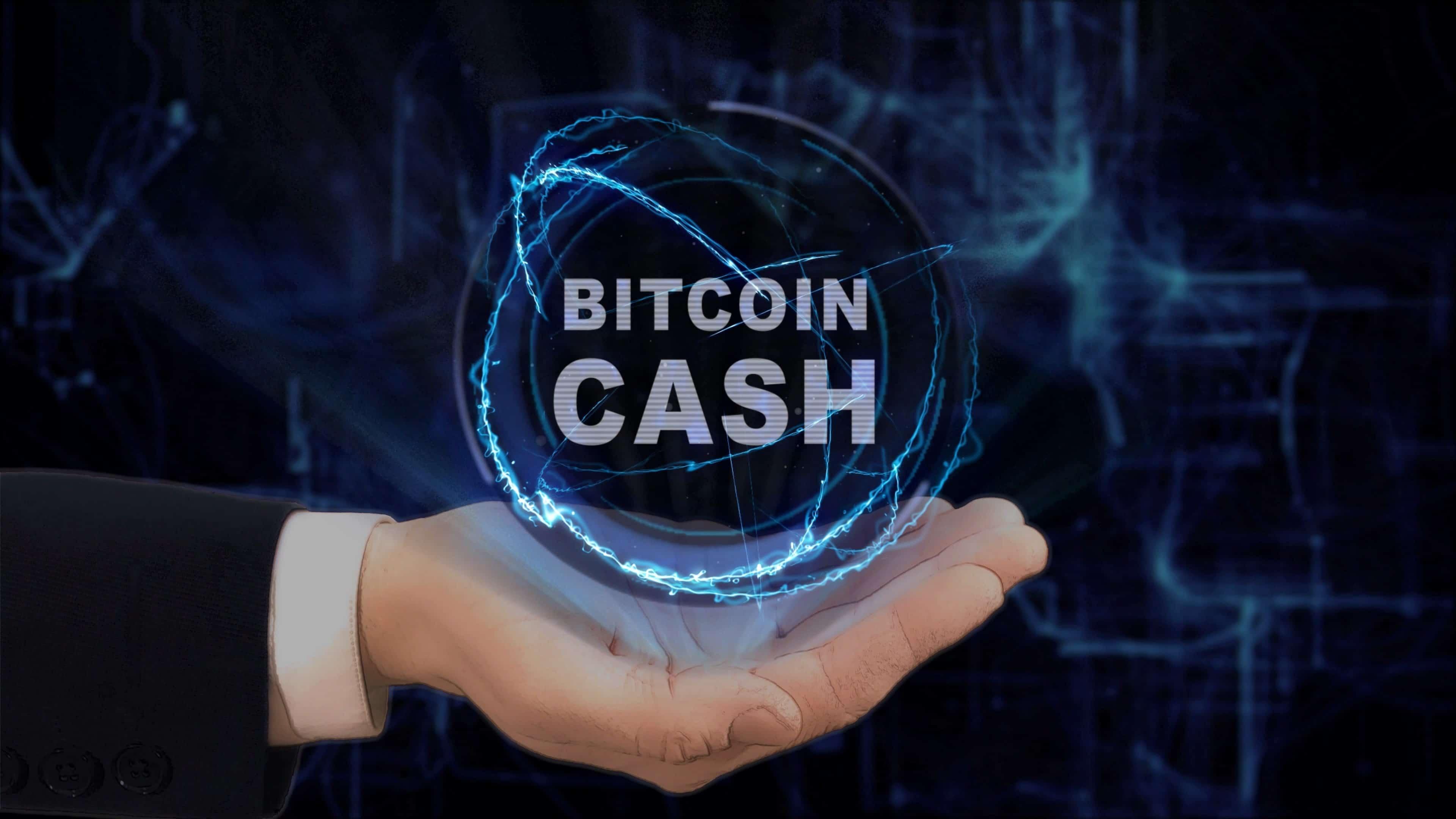 Oggi l'anniversario di Bitcoin Satoshi Vision (BSV)