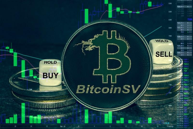 Bitcoin Satoshi Vision: il prezzo oggi