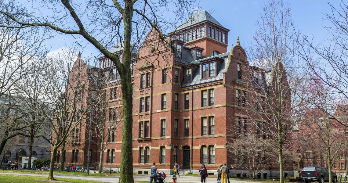 Harvard restituisce i soldi: in polemica anche Novogratz e Pompliano