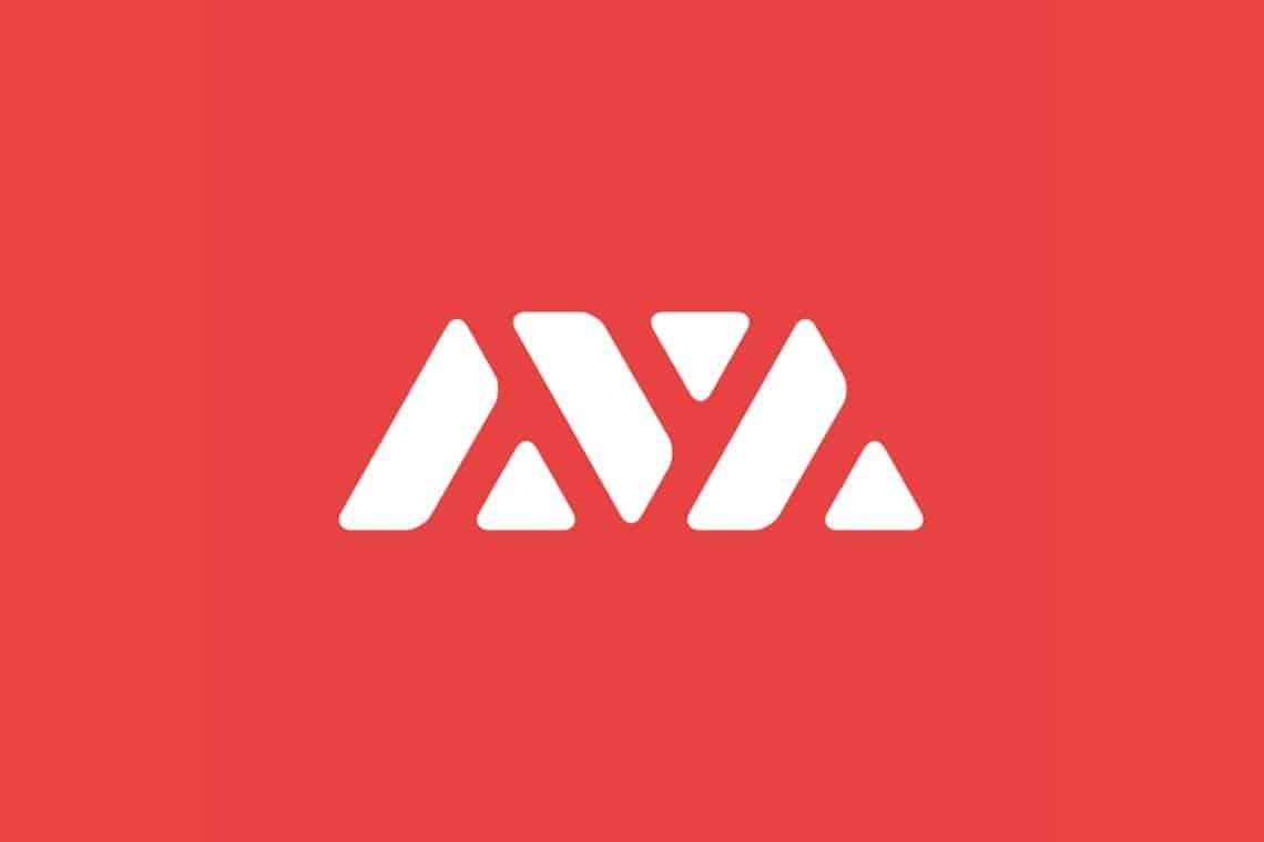 Le blockchain di Ava Labs: tutto quello che c'è da sapere