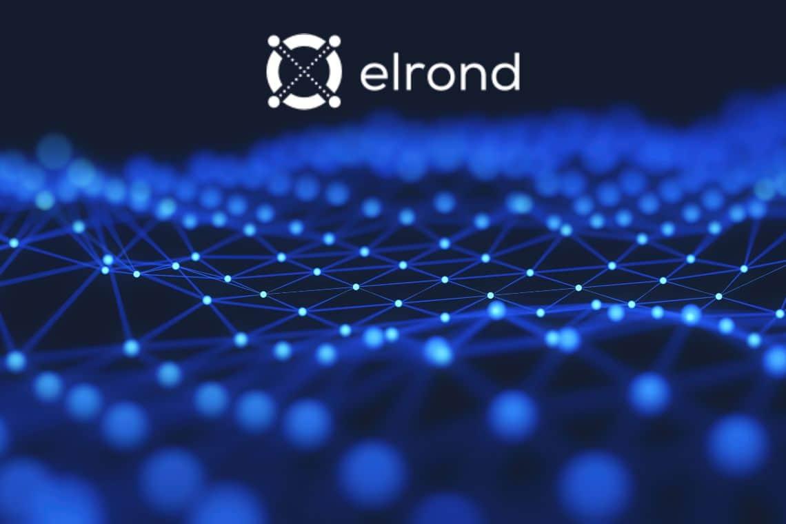 Tutto quello che c'è da sapere sulla criptovaluta Elrond (ERD)